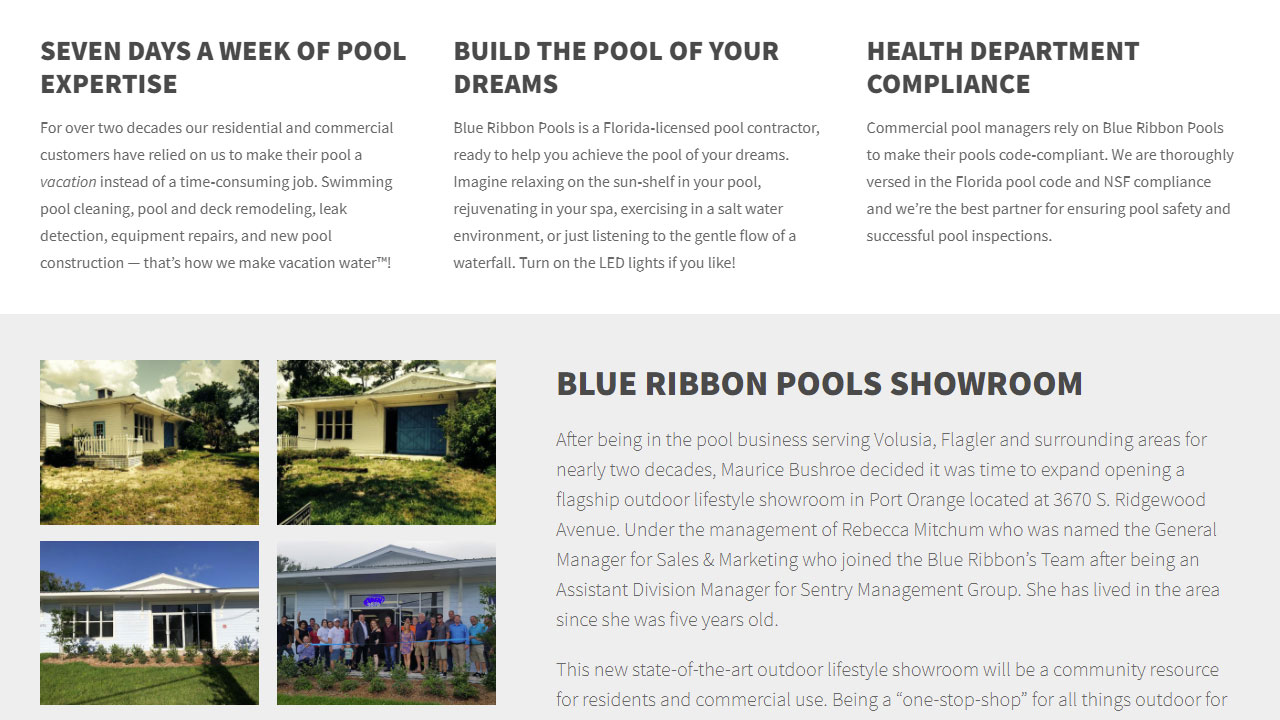 Blue Ribbon Pools detail shot 1